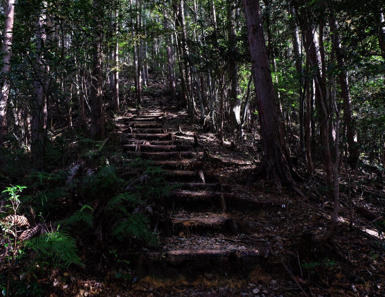 Japan: kumano kudo track