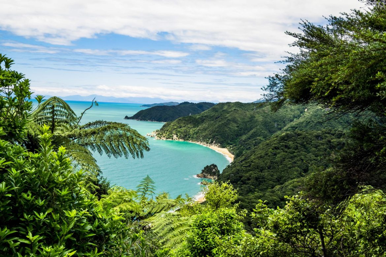 NZ: abel tasman