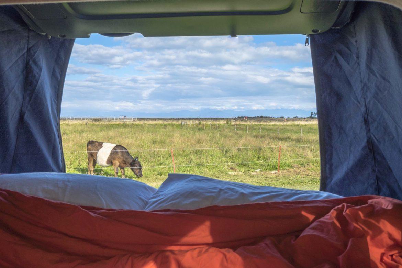 campingview abel tasman track