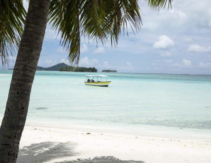 Blog: Frans Polynesië, Huahine