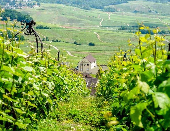 Travel Guide for the Champagne region!