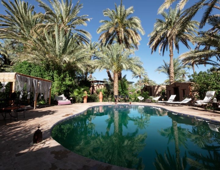 Ecolodge Bab El Oued: Sleeping in an Oasis!