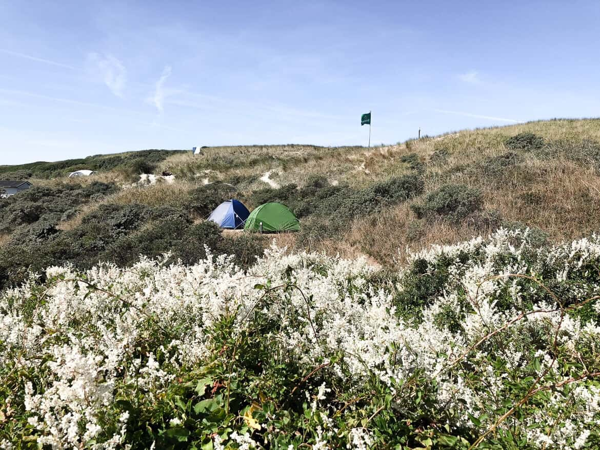 Nederland - Texel camping