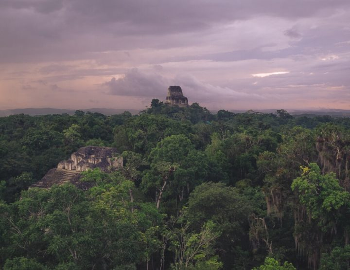 Travel guide Guatemala: Everything you need to know before visiting Tikal!