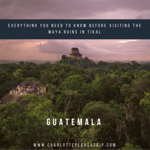 Tikal Maya Ruins Guatemala: Everything you need to know and what kind of tickets to buy!