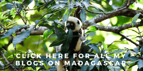 Travel Blogs Madagascar