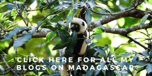 Travel Blogs Madagascar