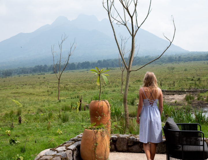 Diary week 11 and 12| Uganda and Rwanda