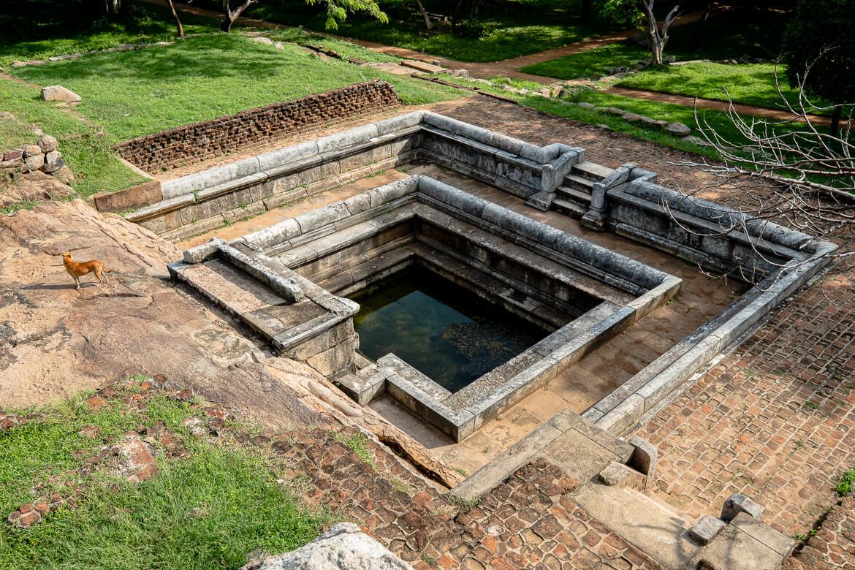 Anuradhapura pond