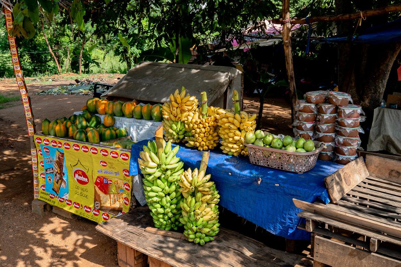 Fruittent Sri Lanka