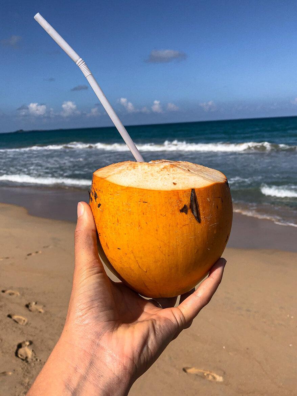 Nilaveli beach king conconut