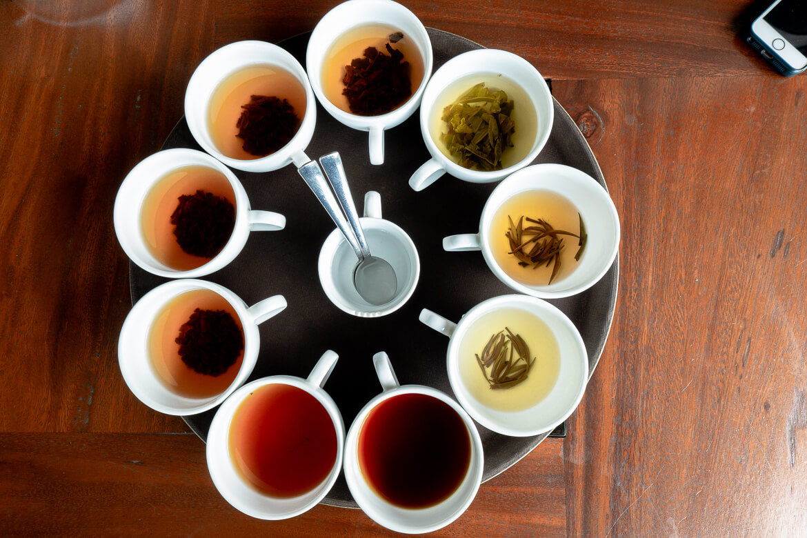 Tasting different kinds of tea