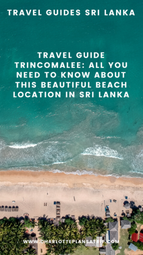 Travel Guide Trinconmalee : the best beaches in Sri Lanka