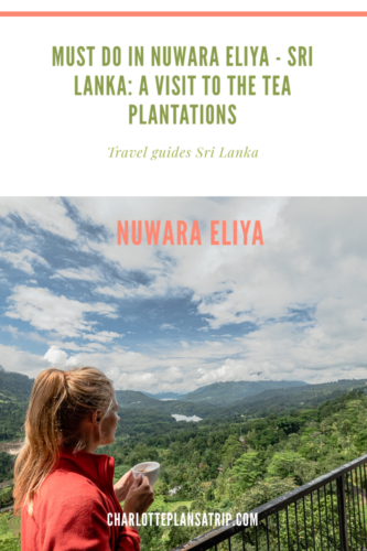 Nuwara Eliya: why you should visit a tea plantation in Sri Lanka